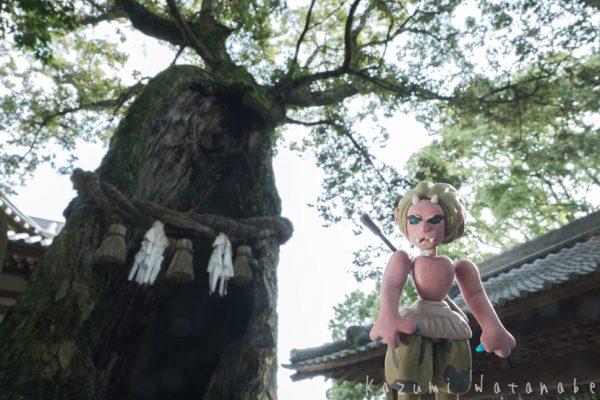 八幡竈門神社の三本指の鬼の石段 動画用スチル写真 完成